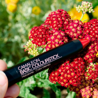 CAMALEON BASIC COLOURSTICK ROJO